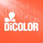 Dicolor Ltda